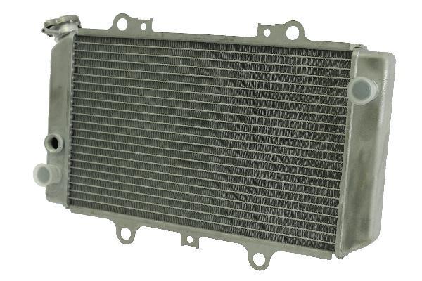 YAMAHA RADIATOR: GRIZZLY 660(M18 1.5 SENSOR PORT) | OEM 5KM124610000